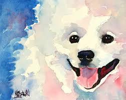 american eskimo dog forum american eskimo dog art print of original watercolor painting 8x10