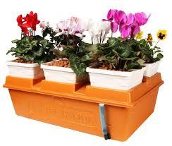 857 best hydroponics aeroponics and aquaponics images on