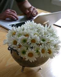 Daisy Centerpiece Ideas by 20 Best Images About Daisy Centerpieces On Pinterest Jars