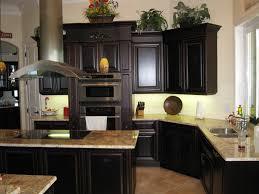 Black Kitchen Cabinet Paint Kitchen Dark Kitchen Cabinets With Light Countertops Remarkable
