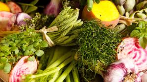 formation cuisine vegetarienne cours et ateliers cuisine cuisine végétarienne