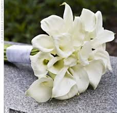 calla bouquet carried an all white calla bouquet wrapped with ribbon