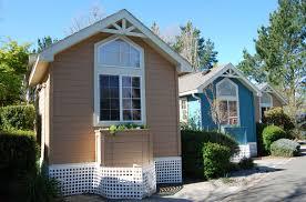 tiny house trend pyihome com