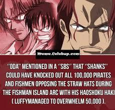 Meme One Piece - one piece meme memecelebup