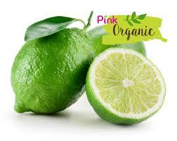 lime organic limes u2013 jadeproduce
