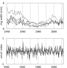 climatic signals in tree ring width and stable isotopes
