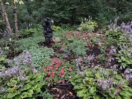 bonnie u0027s self seeded garden beds in pennsylvania finegardening