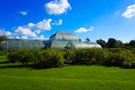 why you need to visit the kew gardens you could travel