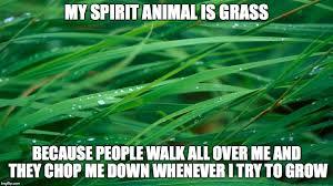 Grass Memes - grass imgflip