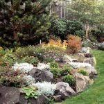 best 25 rock garden design ideas on pinterest yard design garden