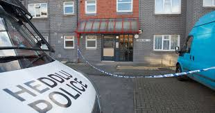 four arrested after assault at cardiff flat block wales online