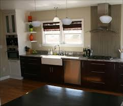 Sink Cabinets For Kitchen Kitchen Room How To Build A Cabinet For Cast Iron Farmhouse Sink