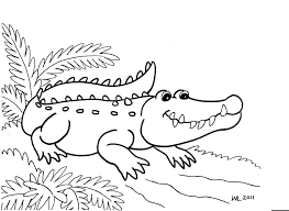 alligator coloring pages u2013 9 coloring