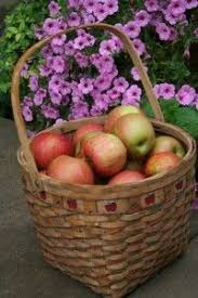 Transplant Fruit Trees - best way to transplant fruit trees fruit trees crab apples and