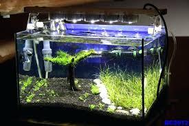 aquarium lights for sale led fish tank lights for sale fooru me