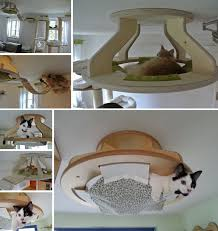 How To Make A Comfortable Bed Best 25 Diy Cat Bed Ideas On Pinterest Cat Beds Pet Beds And