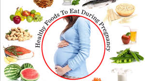 food during pregnancy healthy pregnancy diet pregnancy diet