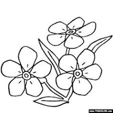 daffodil flower online coloring page and more flowers use