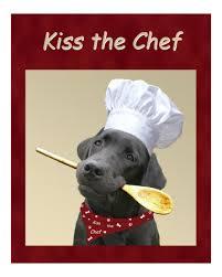 chien cuisine quand un chien cuisine pour un at mes émotions