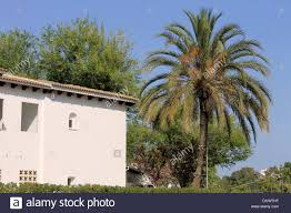 exterior of white spanish house and palm tree blue sky background