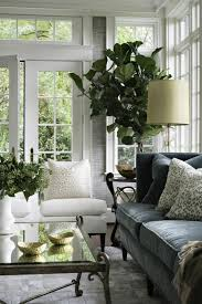 home interior plants decorate with potted plants home 60 exles as you realize