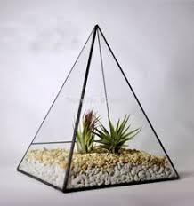 glass centerpice tilted cube handmade stained terrarium