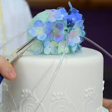 Hydrangea Wedding Crystal Hydrangea Wedding Cake Wedding U0026 Anniversary Cakes