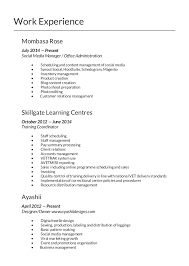 Best Resume Templates 2014 Cv 2014 Template