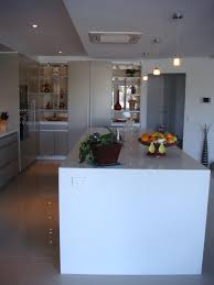 Modern Kitchen Pantry Designs - modern gilligan residence elegant kitchens pantry design house