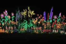 Botanical Gardens Christmas Lights by Seattle Japanese Garden Community Blog Other Gardens Bellevue