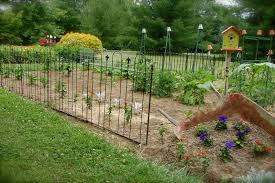 best garden fencing ideas to keep dogs out photograph temporary garden fence to keep dogs out