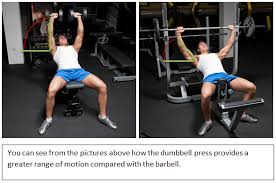 Bench Exercises With Dumbbells Barbell Press Vs Dumbbell Press For Chest Size And Strength