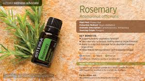 rosemary oil dōterra essential oils