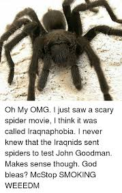 I Saw A Spider Meme - 25 best memes about scary spider scary spider memes