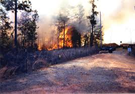 Wildfire Training by Prescribed Burning Beneficial To Training Mission Environment