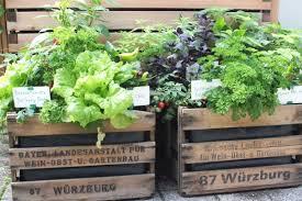gem se pflanzen balkon balkon und terrassenbepflanzung mit mehrwert