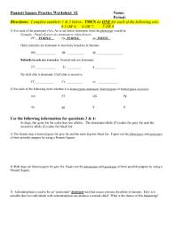 punnett square practice worksheet with punnett square practice  from studylibnet