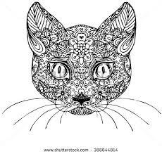 doodle cats heads vector download free vector art stock