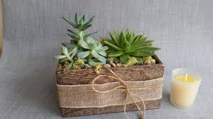 succulent planter by eam in watertown wi elegant arrangements