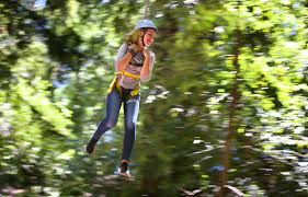 Sonoma Canopy by 10 Outdoor Activities To Try Out In Sonoma County