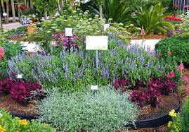 Garden Flowers Ideas Garden Flower Bed Ideas Easy Flower Garden Flower Garden Bed