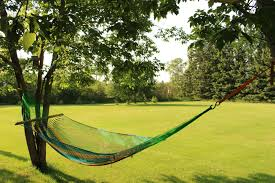 swinging hammock backyard free stock photo public domain pictures