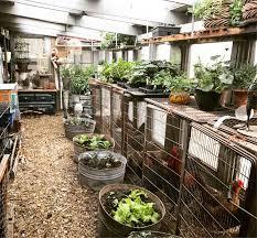 the stylish gardener greenhouse