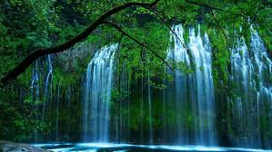 beautiful waterfall drop of water through the dense