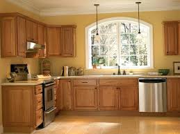 Replacing Cabinet Doors Cost by Kitchen Home Depot Kitchen Doors Within Fantastic Kitchen