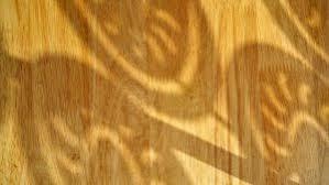 vinyl plank flooring on walls the silicon