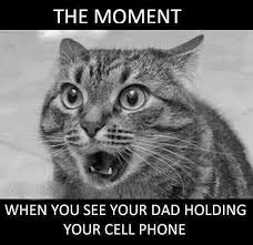 Funny Cell Phone Memes - animal memes your dad holding your cell phone funny memes