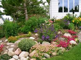 idyllic small rock garden designs garden ponds design ideas small