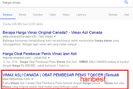 harga fakta vimax asli canada internet marketing blog