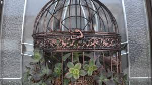 how to plant a beautiful succulent birdcage wreath diy home
